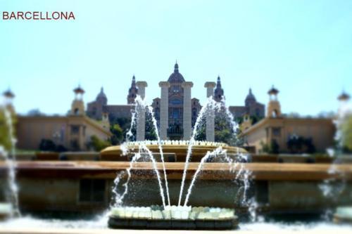 abe- Barcellona - Piazza Di Spagna