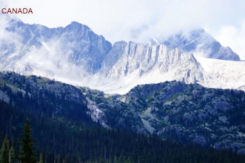 cc- Parco Nazionale di Mount Revelstoke (British Columbia)
