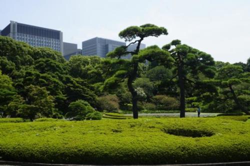 ai- Giardini, Palazzo Imperiale- Tokyo