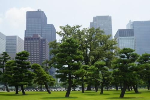 al- Vista città di Tokyo